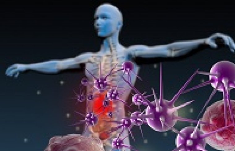 6 types of diseases in humans related to endotoxins of Gram-negative bacteria